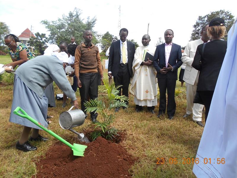 suor Josephine pianta un albero a nome della congregazione